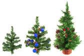 三个圣诞树 — 图库照片