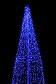 Tree-illumination — Stock Photo