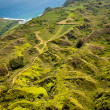Green hills of Molokai island — Stock Photo #34785693