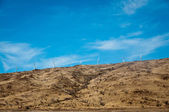 Wind turbines on a steppe hill — Stock Photo