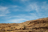 Row of wind turbines on a dry hill — Foto Stock