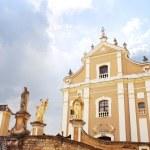 Catholic cathedral in Kamjanets-Podolsk — Stock Photo