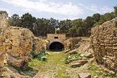 Ruinerna av romerska amfiteatern i kartago, tunisien — Stockfoto