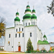Dormition  Cathedral of Eletsky Women's monastery — Stock Photo