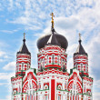Old orthodox church of Cathedral of St. Pantaleon or St. Panteleimon in Feofania, Kiev — Stock Photo