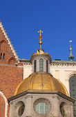 Cracow wawel hill katedrali'nde. polonya — Stok fotoğraf