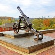 Stock Photo: Old cannon in Chernigov and autumn park as background