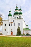 Dormition (Uspensky) Cathedral of Eletsky Women — Stock Photo