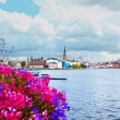 Flowers and the Old Town (Gamla Stan) in Stockholm, Sweden — Stock Photo