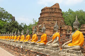 Aligned buddha statues with orange bands in Ayutthaya, Thailand — Stock Photo