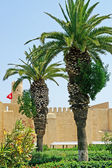 Palms and ribat in Monastir, Tunisia — Stock Photo