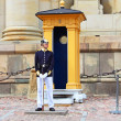 Постер, плакат: Royal Guard protecting Royal Palace in Stockholm