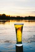Koud biertje in de natuur — Stockfoto