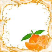 水果闪屏 — 图库照片