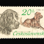 Post stamp — Stock Photo #3026339