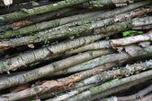 Bars timber — Стоковое фото