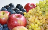 Herbst-früchte — Stockfoto