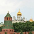 Domes of Moscow Kremlin — Stock Photo #11112812