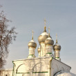 Domes of the church - Stock Photo