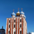 Golden domes of  Ryazan Kremlin — Stock Photo