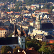City of Lvov, top view — Stock Photo