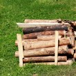 Firewood — Stock Photo #36039771