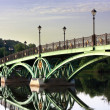 Bridge across the pond — Stock Photo