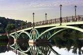 Puente al otro lado del charco — Foto de Stock