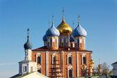 Ryazan Kremlin domes — Stock Photo