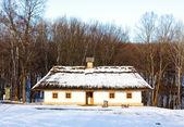 сельский дом — Стоковое фото
