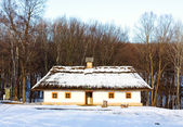 Wiejski dom — Zdjęcie stockowe