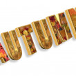 Autumn text 3D - Stock Photo