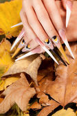 Extremely long nail — Stock Photo