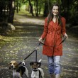 Young woman and his dogs are walking in the park — Stock Photo