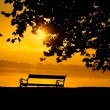Bench in the park at sunset — Stock Photo #13491260