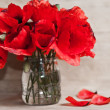 Red poppy — Stock Photo #28740843