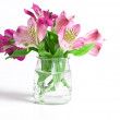 Bouquet of pink flowers — Stock Photo #28744117