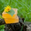 Natural Soap — Stock Photo #28748295