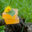 Natural Soap — Stock Photo