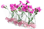Flowers pink in a vase — Stock Photo