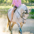 Stock Photo: Horseback riding