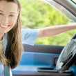 Young woman in the car — Stock Photo #28753839