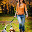 A beautiful woman and his dogs posing outside — Stock Photo #28754049