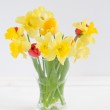 Tulips and daffodils in glass vase on white background — Stock Photo #28756945