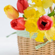 Tulips and daffodils in basket on white background — Stock Photo #28757005