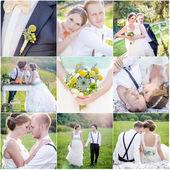 Collage de photos de mariage neuf — Photo