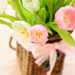 Pink and white tulips on white — Stock Photo