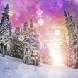 Stock Photo: Majestic sunset in winter mountains landscape
