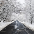 Winter Road — Stock Photo #28762591
