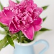 Stock Photo: Pink flowers in a vase